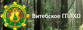 Витебское производственное лесохозяйственное объединение
